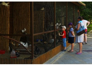 Отдых с детьми Пансионат Фея-3 Анапа